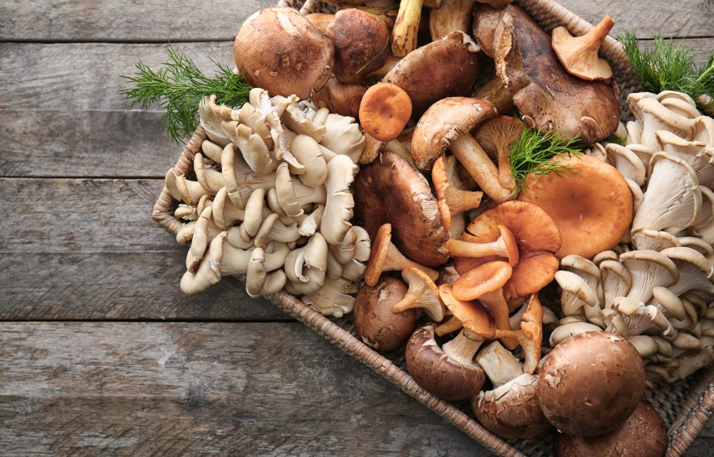 fuente de proteinas en la dieta vegetariana